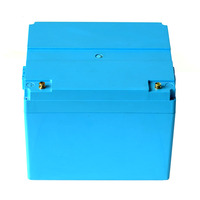 12V 100Ah LiFePo4 storage battery pack