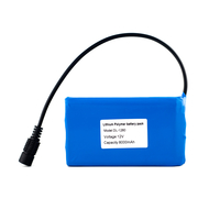 12V  8000mah Lithium Battery Pack