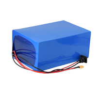 48V20Ah Lithium iron phosphate battery pack